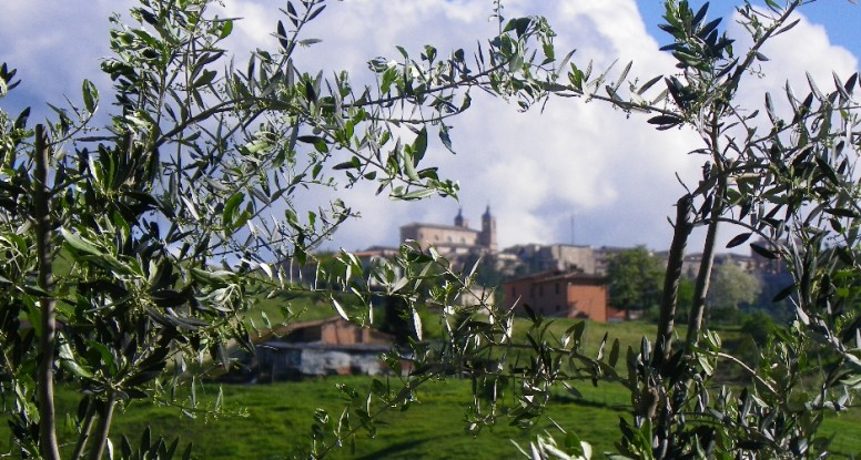 Olives and cathedral, painting holiday in Italy